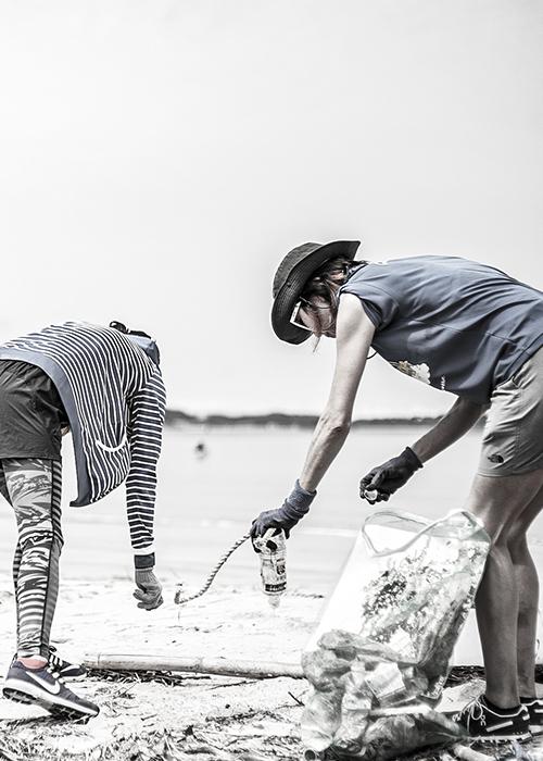 海岸の清掃活動を行う様子